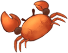 The image of a tiny crab